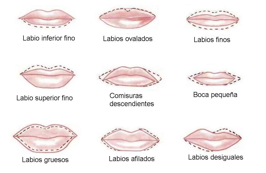como pintarte los labios segun su forma
