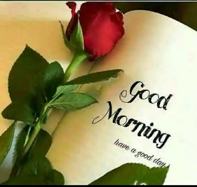 Wish you very happy Good Morning Quotes For you