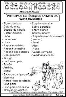 Animais fauna da Rússia copa mundial