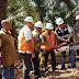 Bupati Asahan Wujudkan Harapan Masyarakat Dusun III Bukit Kijang Untuk Memiliki Jaringan Listrik PLN