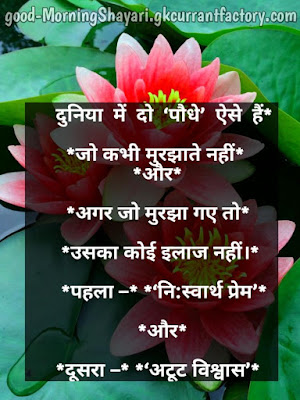 Good Morning Sms in Hindi, Good Morning Msg in Hindi, Good Morning in Hindi Quotes
