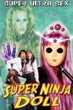 Super Ninja Bikini Babes 2007