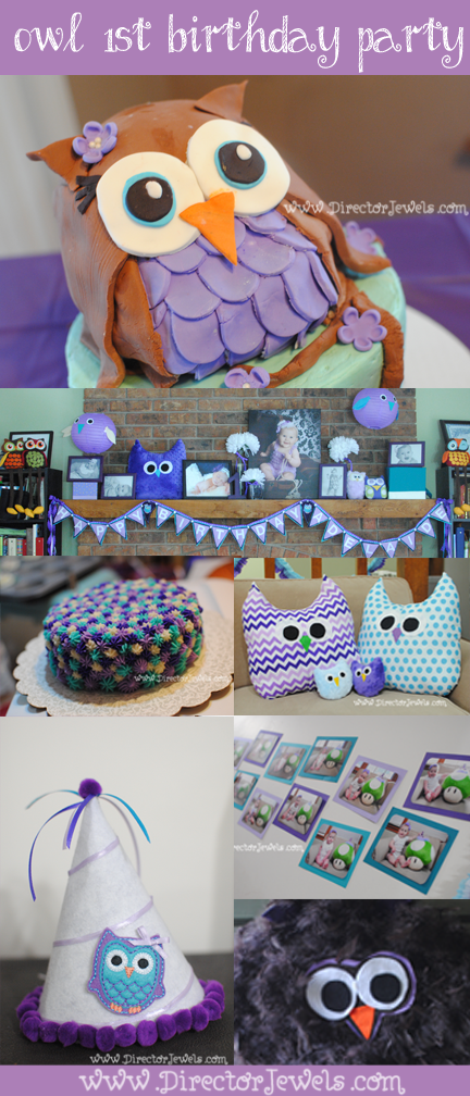 Baby Girl Purple and Teal Turquoise First Birthday Owl Party www.directorjewels.com - Owls, Banner, Plush, Smash Cake, Photo Display, Party Hat, Handmade, Cake, High Chair Tutu