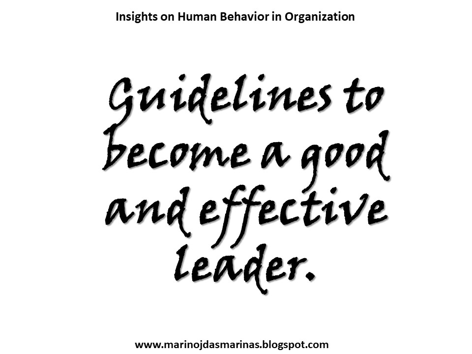 Insights on Human Behavior in Organization: Guidelines to