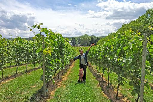 Vandeurzen Wijnkasteel Best Belgian Wines