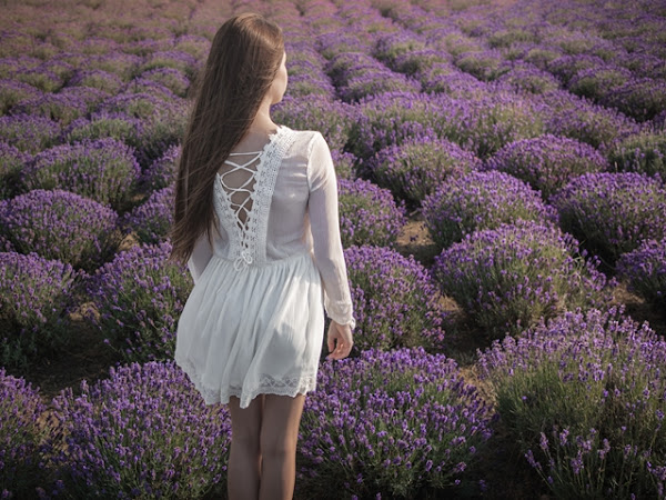 323. Stylizacja: biała sukienka w lawendowym polu + właściwości olejku lawendowego