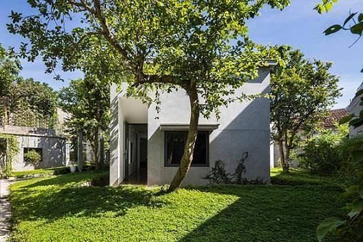 Ngôi nhà tuyệt đẹp, siêu độc đáo 'nuốt' trọn 5 cây gỗ quý ở Nghệ An lên báo Tây 2