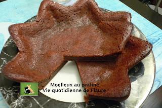 Vie quotidienne de FLaure: Moelleux au praliné