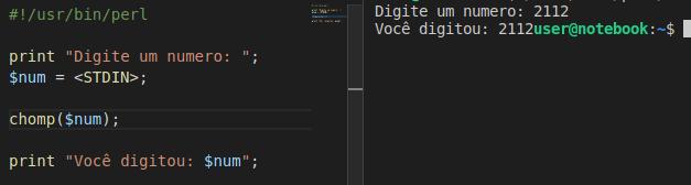 Como usar <STDIN> em Perl