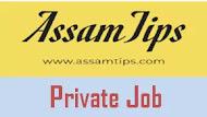 Private Job Career in Assam