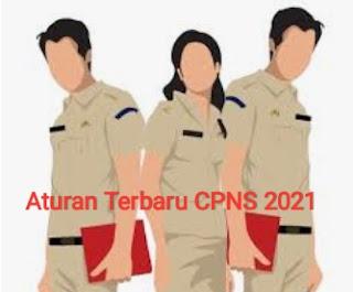 Peraturan CPNS Tahun 2021 yang wajib Kalian ketahui sebelum mendaftar