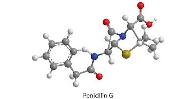 penicillin G trong chữa giang mai