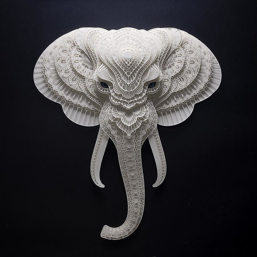05-Elephant-Patrick-Cabral-www-designstack-co
