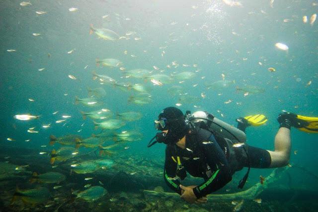 Mergulho Barra de São Miguel