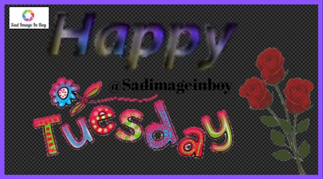Happy Tuesday images   good morning happy tuesday images, tuesday good morning