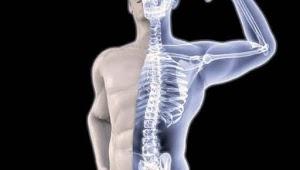 5 Sumber Nutrisi untuk Memperkuat Tulang