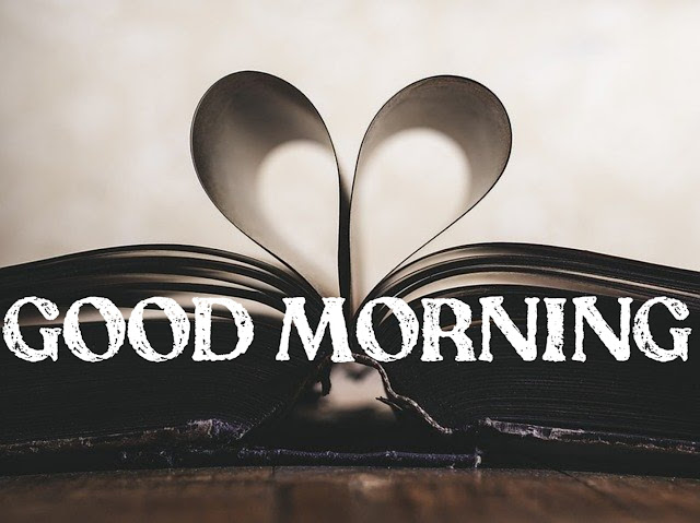 Good morning images Love birds