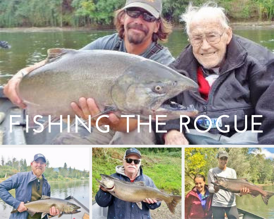 Rogue river fishing guide 39 s report september 24 2017 for Rogue river fishing report