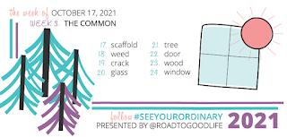 Week of October 17, 2021's theme is The Common. 17-Scaffold. 18-Weed. 19-Crack. 20-Glass. 21-Tree. 22-Door. 23-Wood. 24-Window.