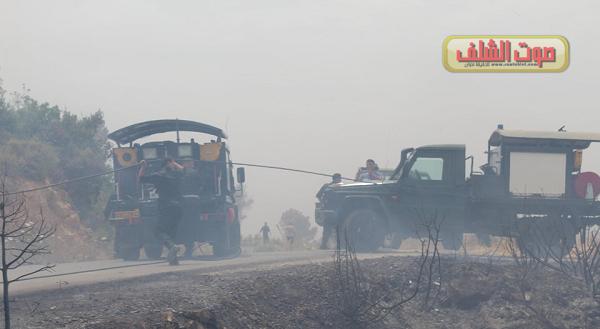 الحرائق تتلف أزيد من  13هكتار من الغابات  بين تنس وبني حواء