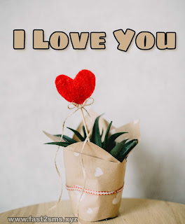 I Love U picture by fast2sms