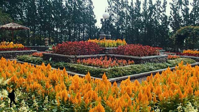 Melrimba_Garden