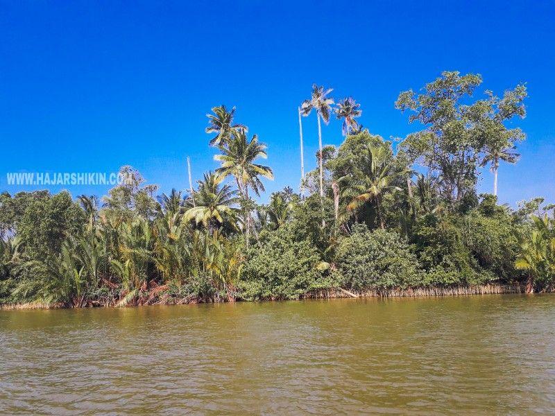 Pulau Mayat