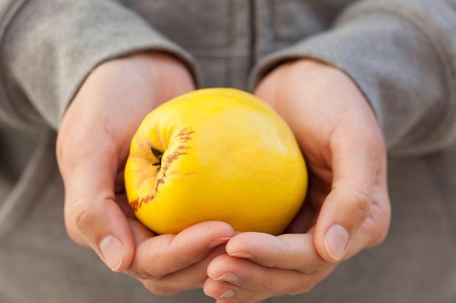 Consejos sabios para comprar frutas y verduras