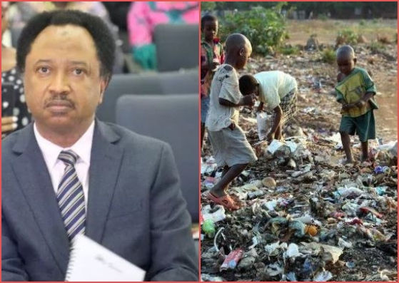 "Senator Shehu Sani Reveals Why Northern Nigeria Is In ""Extreme Poverty""."