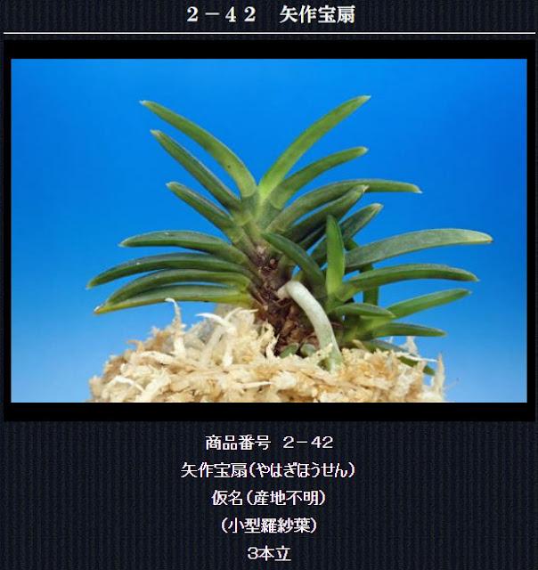 http://www.fuuran.jp/2-42.html
