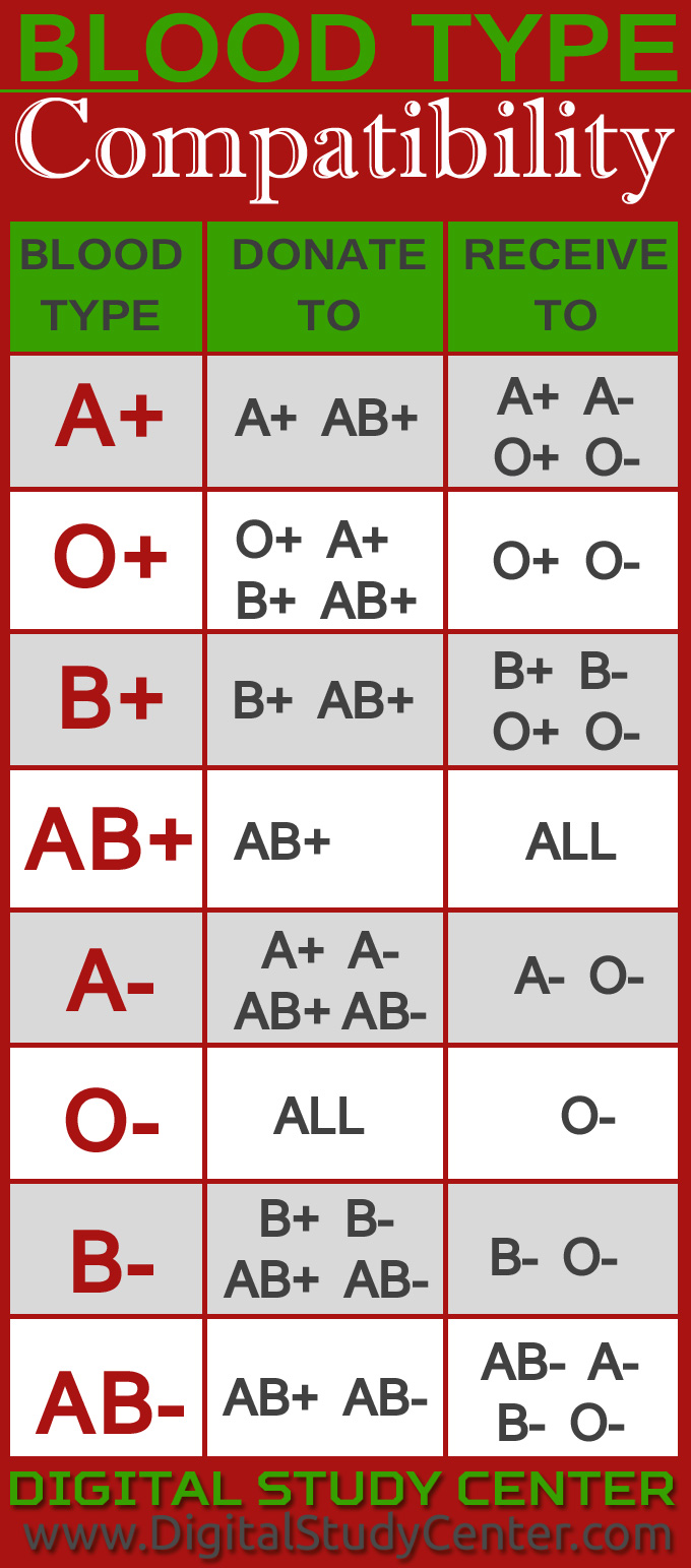 Blood Type Compatibility - Digital Study Center | An