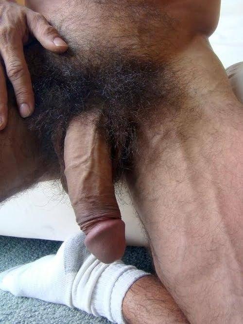 hairiest-pussy-biggest-penis