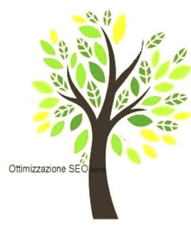 gestione siti web con ottimizzazione