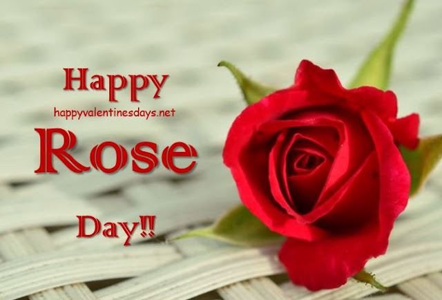 happy-rose-day-2020-hd-images