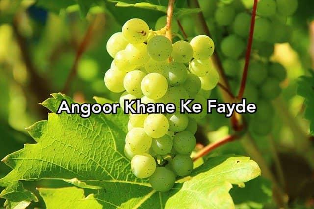 Angoor Khane Ke Fayde in Hindi - Grapes Benefits in Hindi