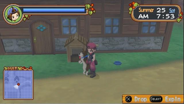 hewan-anjing-harvest-moon-hero-of-leaf-valley