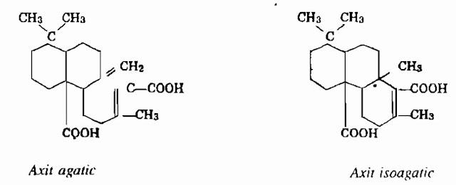 Thành phần hóa học Cây Lim - Erythrophloeum fordii - Nguyên liệu làm thuốc Có Chất Độc