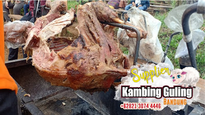 Jasa Catering Kambing Guling di Bandung, Catering Kambing Guling di Bandung, Catering Kambing Guling Bandung, Kambing Guling di Bandung, Kambing Guling Bandung, Kambing Guling,