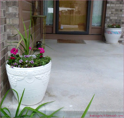 Flower pots planted in the spring | Picture featured on and property of www.BakingInATornado.com
