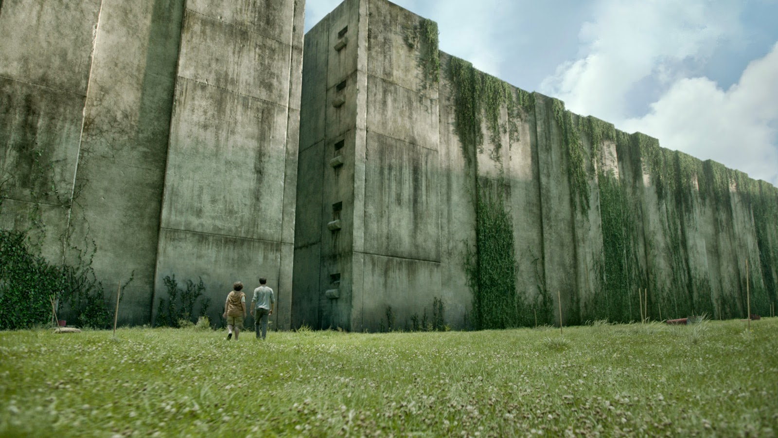Walls of the maze