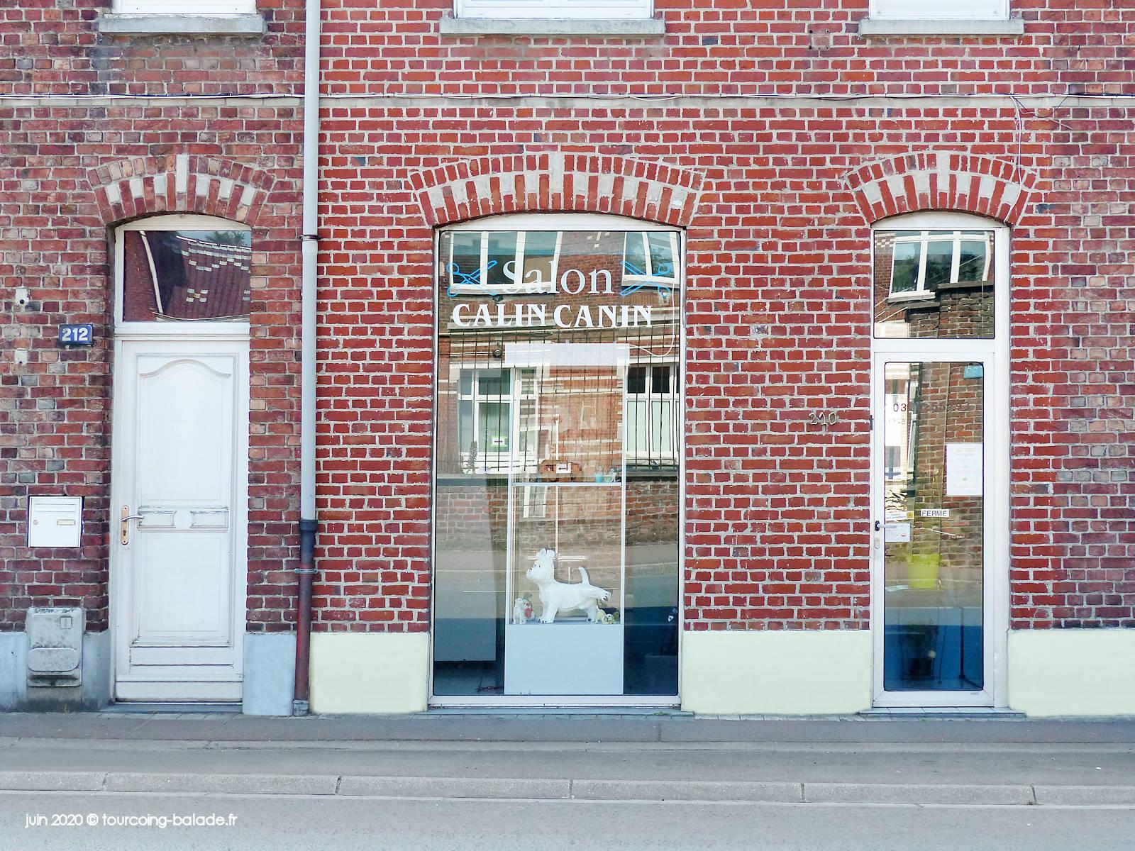 Toilettage Chiens Tourcoing - Salon Calin Canon, 2020