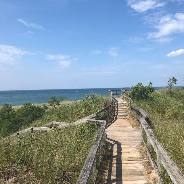 Boardwalk atop the bluff in New Buffalo, Michigan!