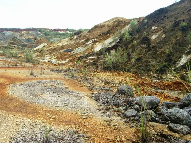 placer mining environmental impact