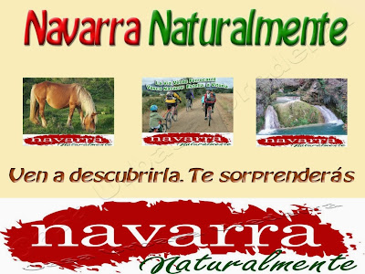 175 Clúster Empresariales Navarra Reunión Cooperar   www.casaruralurbasa.com