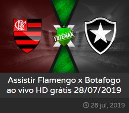 Assistir Flamengo x Botafogo ao vivo online grátis hoje dia 28/07/2019 às 16h00 - Brasileirão Série A - Transmissão da GLOBO RJ e PREMIERE CLUBES  (FUTEMAX)