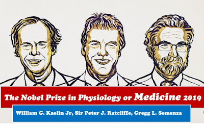 William G. Kaelin Jr, Sir Peter J. Ratcliffe and Gregg L. Semenza win Nobel Prize in Medicine 2019 for discovery of how cells sense and adapt to oxygen availability