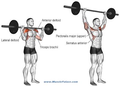 Exercises for Bigger Shoulders
