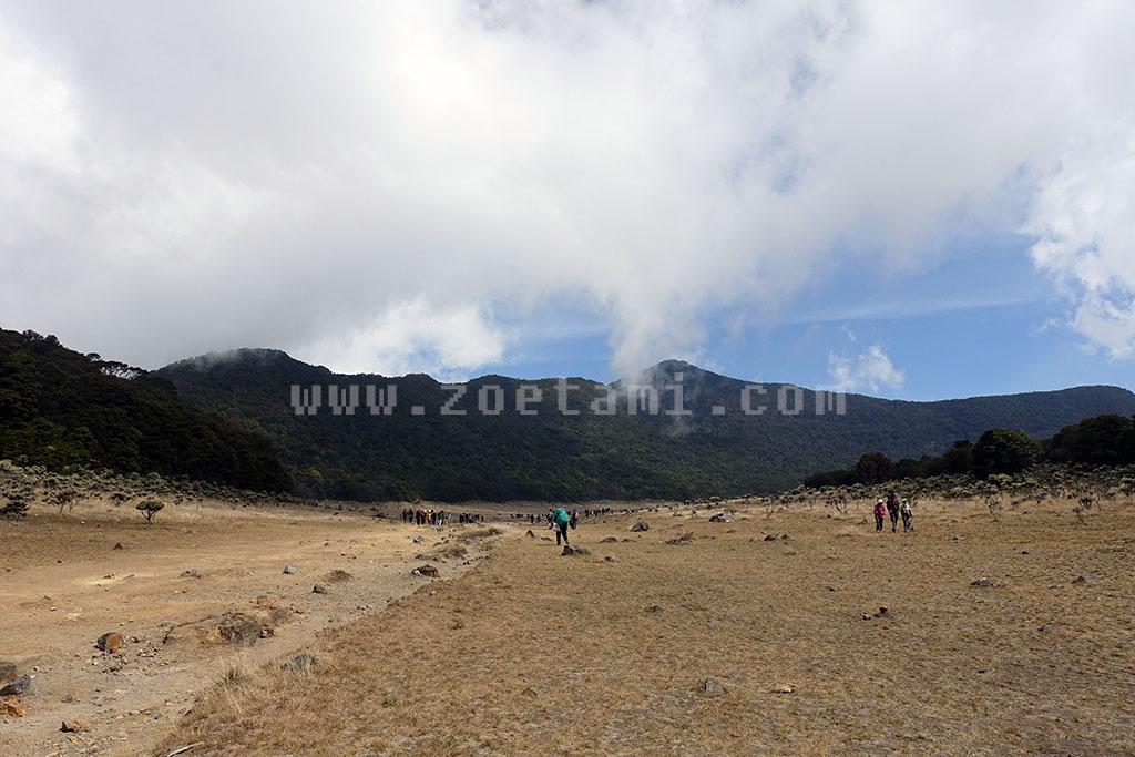 Info Lengkap Pendakian Gunung Gede Pangrango