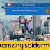 The Amazing Spider Man 2 v1.2.2f Apk Mod + Data for android