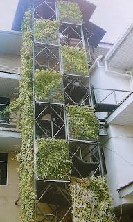 Taman Vertikal | Vertical Garden | jasataman.co.id IX